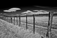 Fence & Clouds