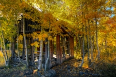 Shepherd's Shack in Aspens