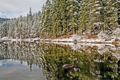 Truckee River Reflection